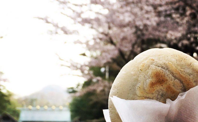 桜の神宮で判官さま